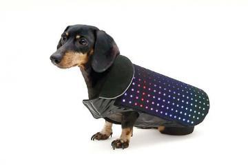 Disco Dog: Smartphone-enhanced LED Dog Vest