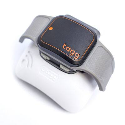 Tagg Pet Gps Plus Collar on cat gps tracking device