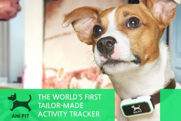 AniFit: Weight and Fitness Monitor for Dogs