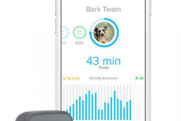 Whistle 3 Wearable Pet Tracker