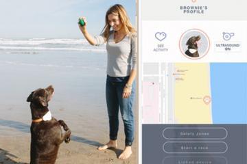 Gosi Smart GPS & Activity Tracker for Pets
