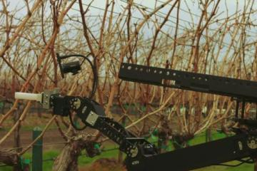 Remote Operated Vineyard Robot with VR Control