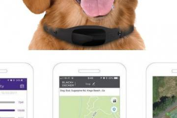 BLACK+DECKER Smart Dog Collar with GPS