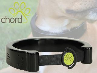 Chord Collar image on Cool Wearable coolwearable.com