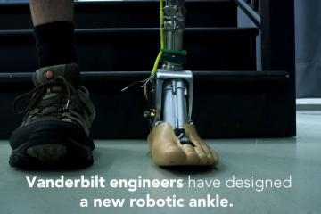 Engineers Develop Adaptive Robotic Ankle