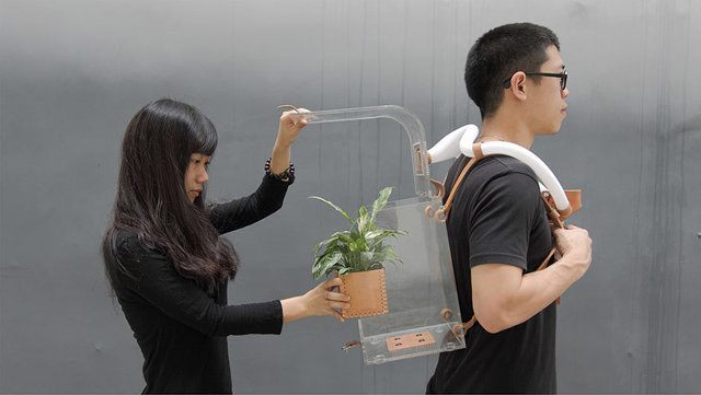 Wearable Plant Cleans The Air