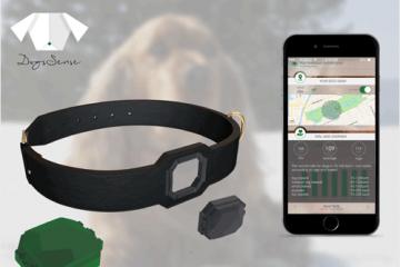 DogsSense: Dog Locator + Activity Tracker