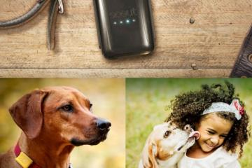 Scout Wearable GPS Tracker for Kids & Pets