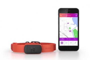 Nuzzle: Smart Pet Collar for Dogs & Cats