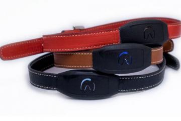 Flipaw Smart Dog Collar + Sensors