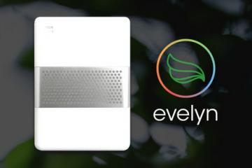 Evelyn: Smart Personal Air Sensor