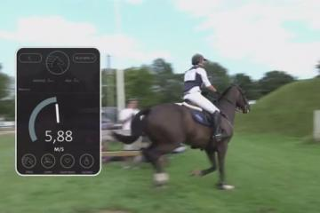 Seaver Sleeve: Smart Wearable for Horses