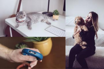 Scollar Mini Smart Collar for Your Pets