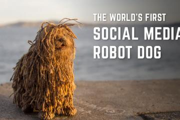 Soshee Robot Dog Reacts To Your Social Media Notifications