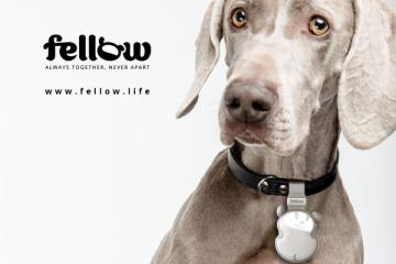 Fellow Smart Electronic Leash for Dogs with Bluetooth 5