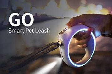 GO Smart Pet Leash with Bluetooth