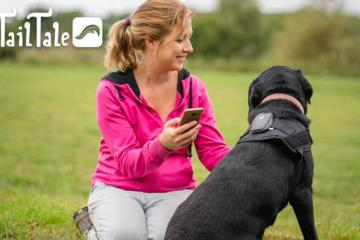 TailTale: Activity, Location, and Health Tracker for Dogs