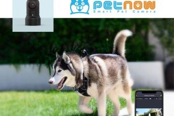 PetNow: Smart Wearable Pet Camera