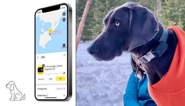 Found LTE Cellular GPS Location Tracker for Pets, Cars