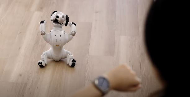 Aibo Robotic Dog Gets Smartwatch Support